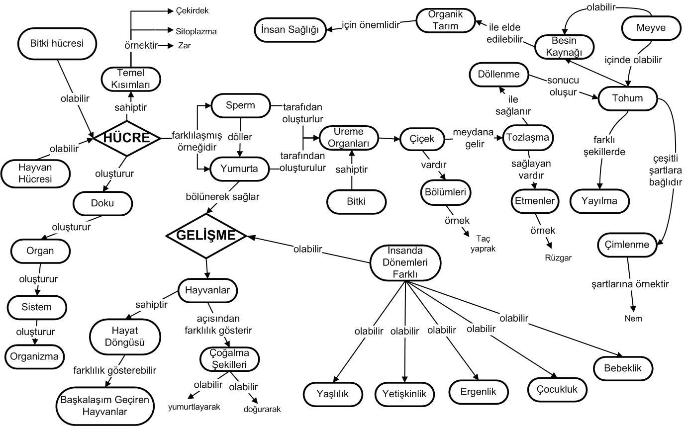 Hücre ile ilgili kavram haritası 1